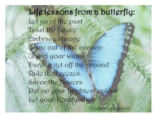 Butterfly-Quotes-38